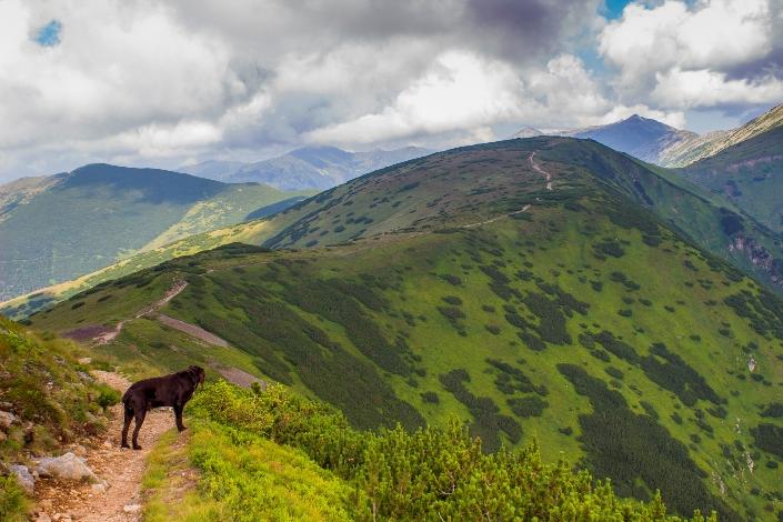 Hrebenovka Nízke Tatry