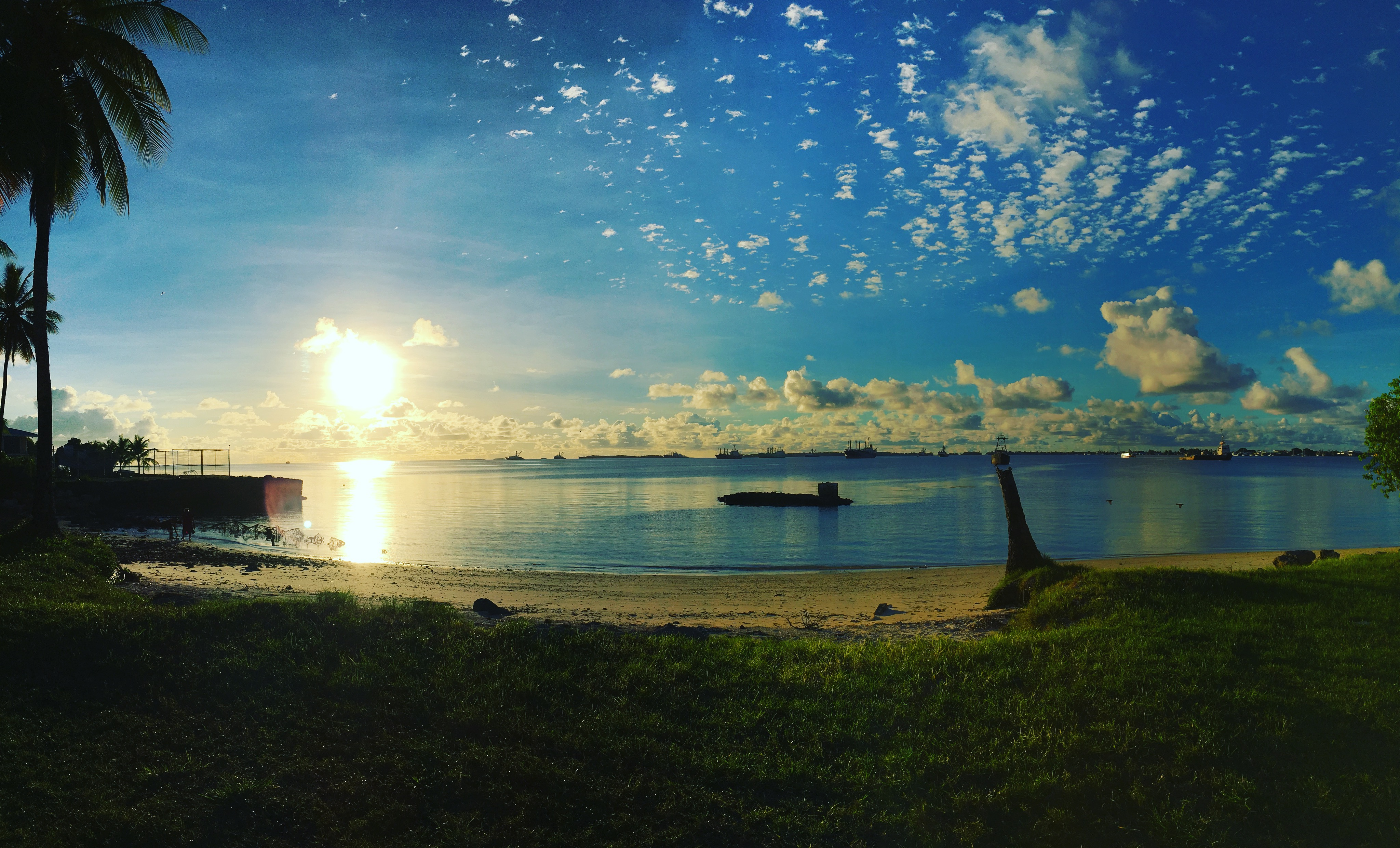 Palm Coast datovania