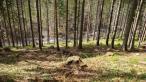 Babia hora - chodník